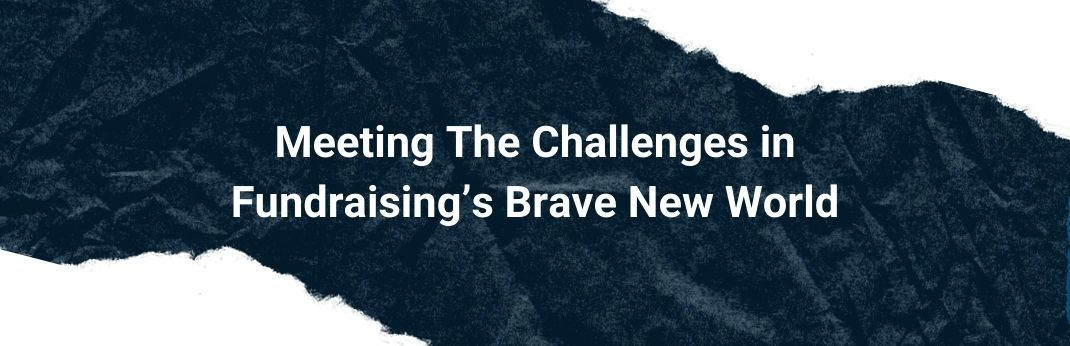Webinar Meeting The Challenges in Fundraising's Brave New World Cover